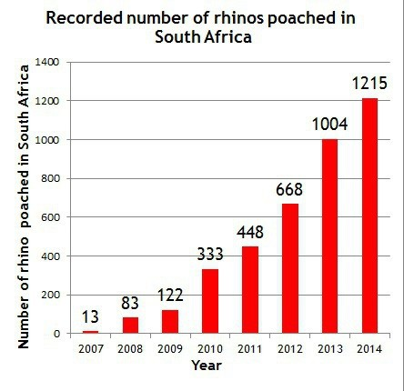 Save the Rhino Graph