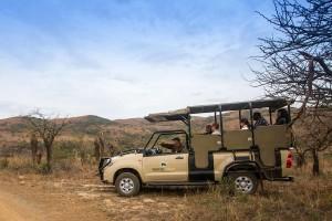 Luxury Safari Lodge Safari Drive
