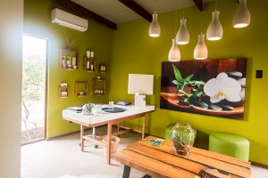 Luxury Safari Lodge Spa Reception