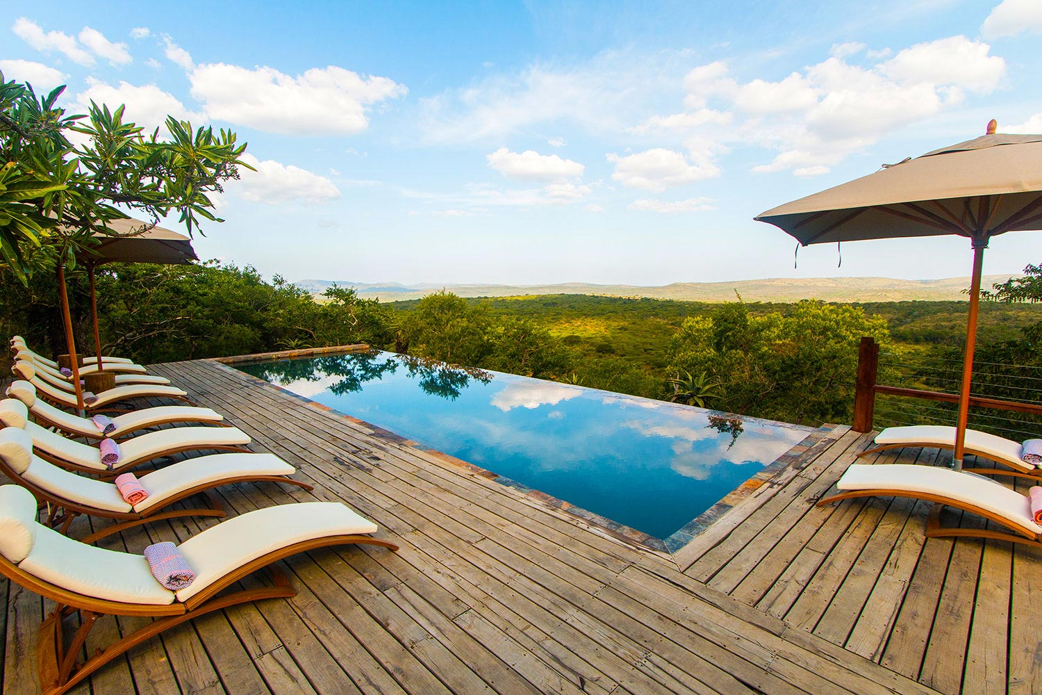 Luxury Safari Lodge Hluhluwe Accommodation Swimming Pool