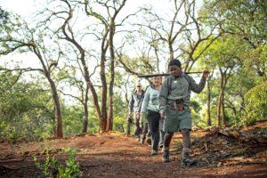Bush Trails at Rhino Ridge