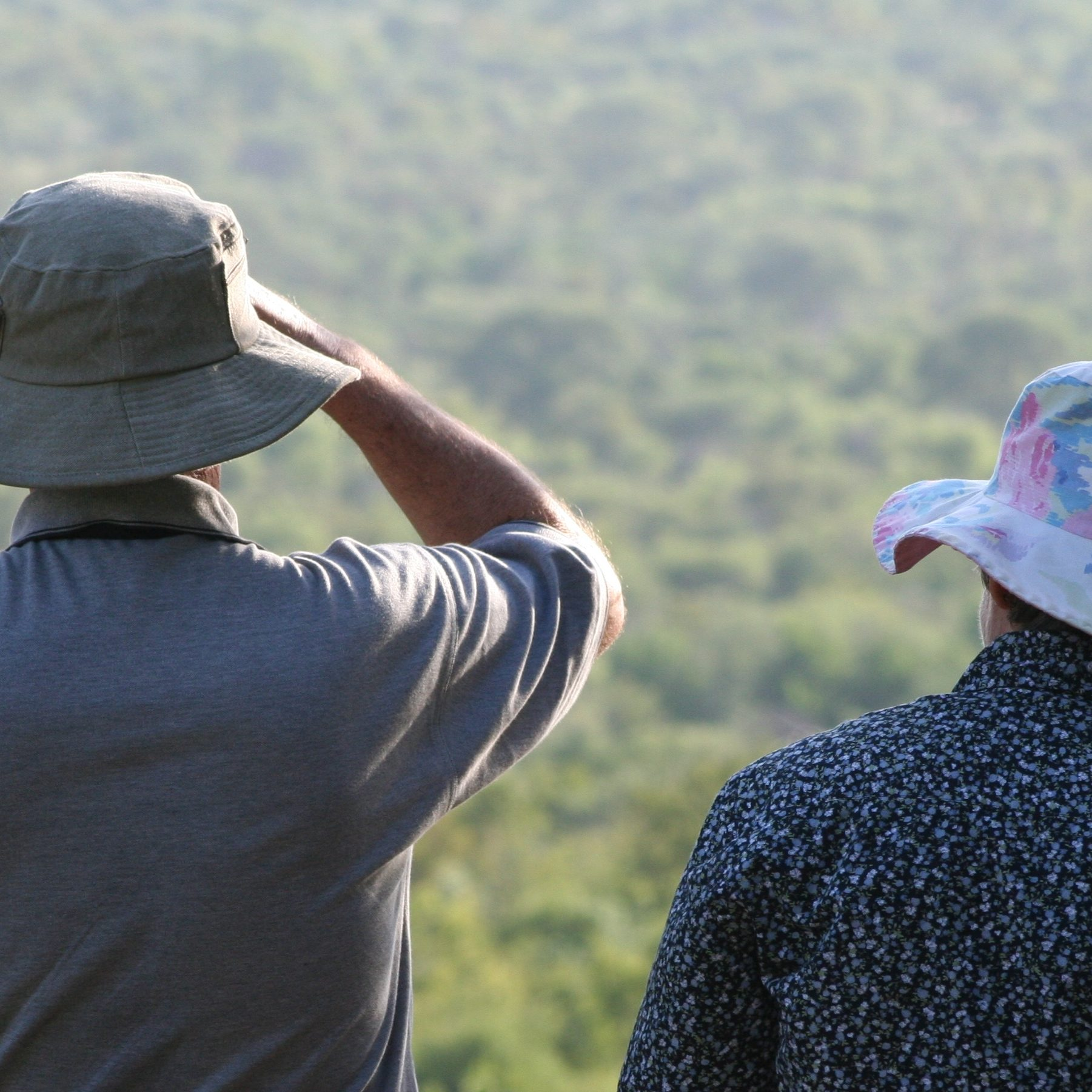 Game viewing in Kruger National Park